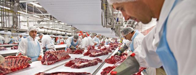 procesare carne. fabrica
